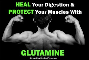 Learn how you can heal your digestion and protect your muscles with glutamine. This supplement can help you optimize your health or overall muscle building.