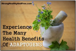 Learn about all the benefits of adaptogens and how they can improve your health, give you vitality and energy while protecing you from high stress levels.