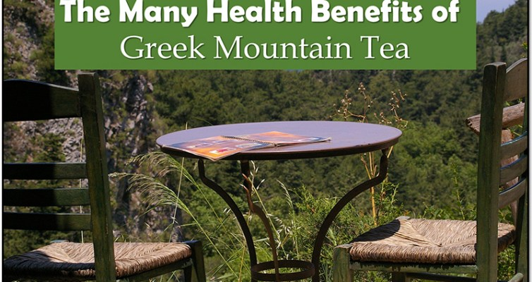 Experience the many health benefits of Greek mountain tea! #Greek #mountaintea #healthbenefits