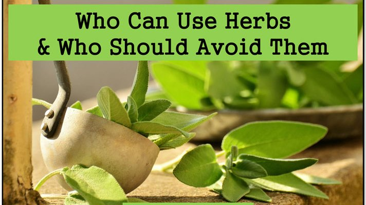 Who can use Herbs for optimal health and who should avoid them! #health #herbs #safety