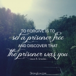 <p>To forgive is to set a prisoner free and discover that the prisoner was you. #forgiveness #marriage</p>