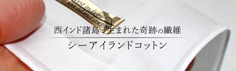 中国纺织协会与日本海岛棉协会交流探讨