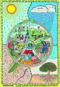 Permaculture Mandala. Image used with kind permission from Spiralseed. http://www.spiralseed.co.uk/mandala/