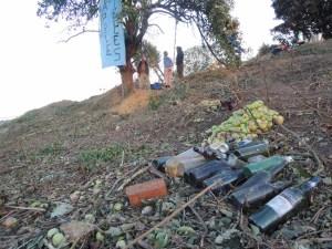 Selsley Harvest and Apple Tree Belle Vue Oct 2013 082