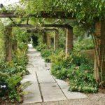 Potężne kolumny owinięte wokół liany - chroniony ogród