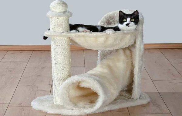"""Combinação de rede e tubos - uma das opções """"luz"""" para um gato para um gato"""