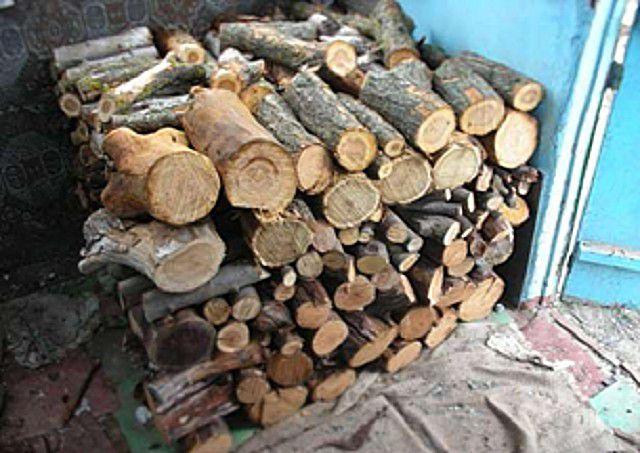 Применять древесину тополя или ивы для бани можно лишь тогда, когда нет никакого иного выбора