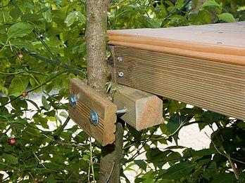 Buộc chặt một ngôi nhà trên cành cây