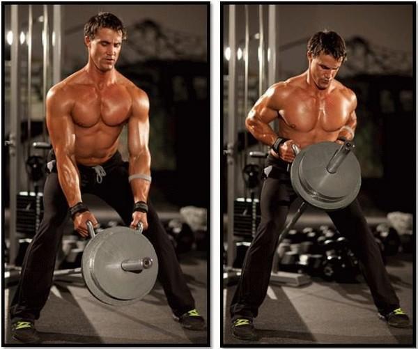 Упражнения на спину в тренажерном зале для мужчин