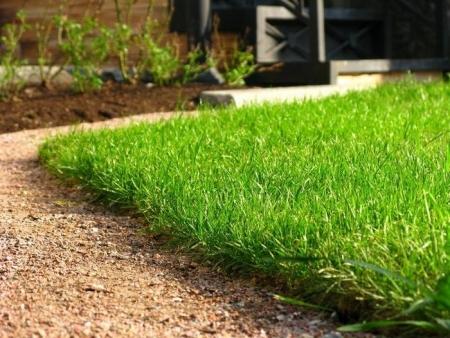 dating iarba este întotdeauna mai verde