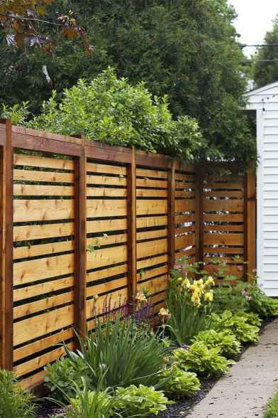 64 simple and cheap privacy fenceideas