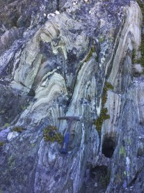 Folded blueschists in the Condrey Mountain Window, California.