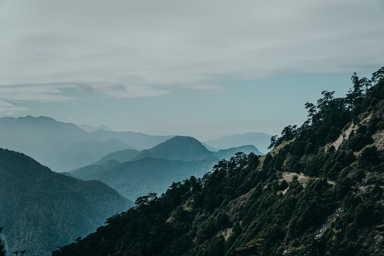 奇萊南華黃金大草原風景