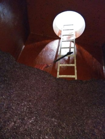 Bhilar post fermentation in concrete tank. Ready for the press