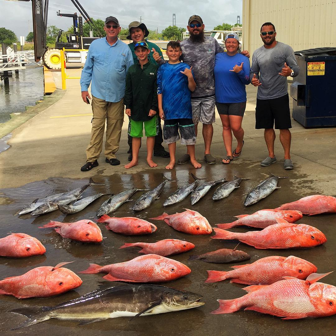 snapper-ling-cobia-king-fish-caught-offshore-fishing-charter-2018