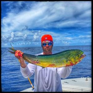 beautiful-mahi-mahi-fish-charter