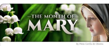 Month-Of-Mary