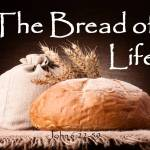Newsletter: 8th August 2021 - 19th Sunday Ordinary Time Year B