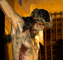 Daily Devotion Wednesday 21st July 2021 The Precious Blood of Jesus