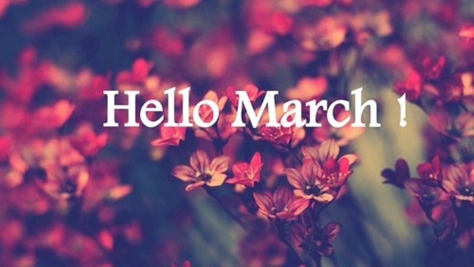 Status thương nhớ Tháng Ba về, yêu thương giăng tràn mọi nẻo…