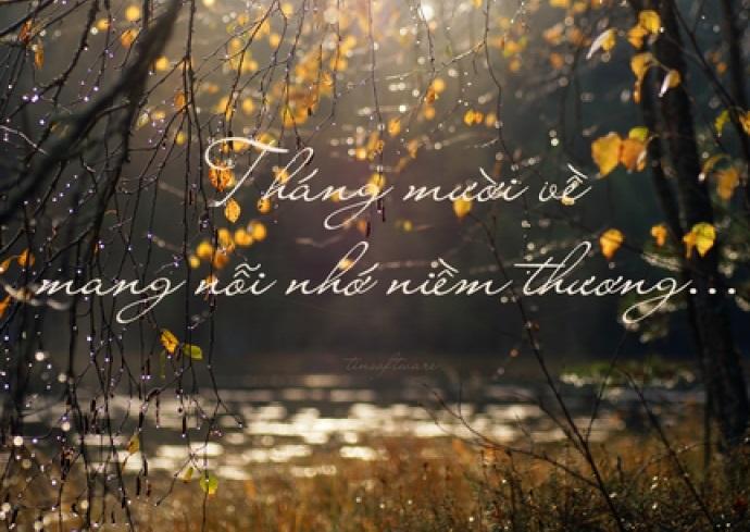 Stt tháng 10 về trong nỗi nhớ niềm thương, trong những ước vọng của em