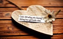 Những Stt suy ngẫm về tình yêu thương trong cuộc sống