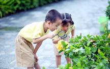 Bố mẹ thông minh sẽ biết cách giữ tính hiếu kì cho trẻ