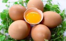 15 mẹo vặt chế biến trứng gia cầm bổ ích cho người nội trợ