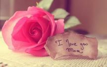Những lời chúc tuyệt vời nhất gửi đến mẹ, người phụ nữ quan trọng nhất đời con nhân ngày 20/10