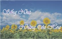 STT Hãy sống như một đóa hoa đầy sức sống
