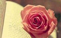 Tổng hợp những status hay nhất về sự không chung thủy trong tình yêu