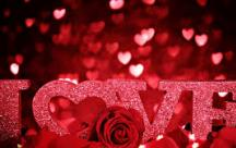 Kế hoạch cho một Valentine độc thân tràn ngập yêu thương