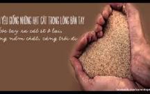 Status hay Tình yêu muốn bền đừng giữ quá chặt, cũng giống như cát, càng bóp chặt, càng dễ trôi tuột mất