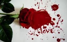 Những câu nói buồn đến nhói lòng về một tình yêu tan vỡ