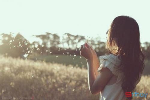 Status buồn Nếu em chạm mặt anh - người em đã từng thương hết lòng...