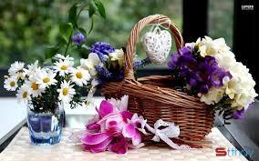 Những lời chúc ngọt ngào ngày 8/3 dành tặng người con gái bạn yêu thương