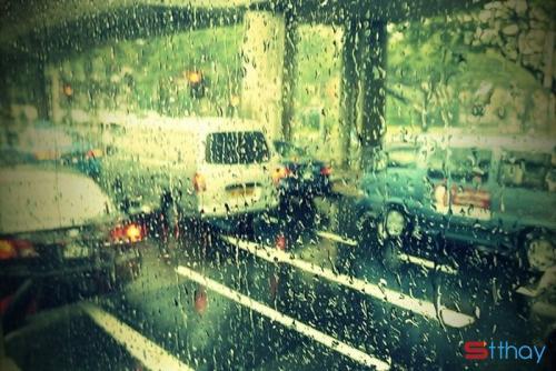 Stt tháng 5 về hanh hao trong vạt nắng ngần vàng ươm và cơn mưa đầu mùa bất chợt
