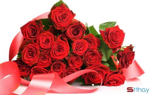 Stt lời chúc 8/3, hãy gửi những lời chúc 8/3 ý nghĩa, chân thành cho người vợ yêu quý của bạn