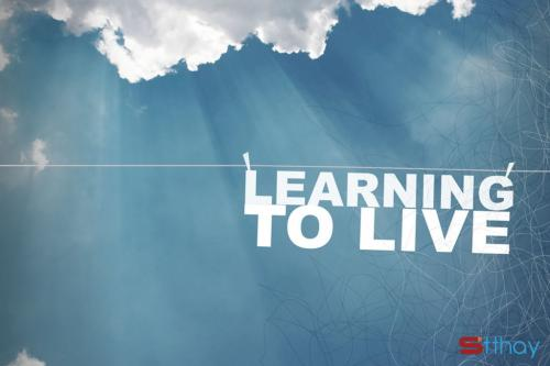 Bài học cuộc sống đã dạy cho chúng ta qua những stt ý nghĩa