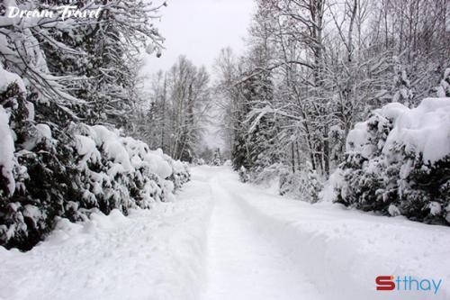 Những status buồn cất lên từ những trái tim cô đơn khi mùa đông đến