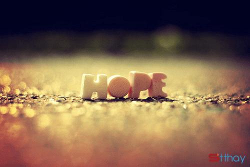 STT đừng gieo hi vọng rồi lại dập tắt yêu thương