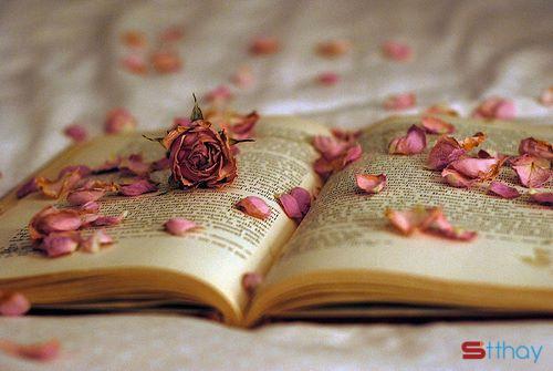 Stt viết cho tình yêu dang dở Chuyện chúng ta đã trở thành quá khứ rồi
