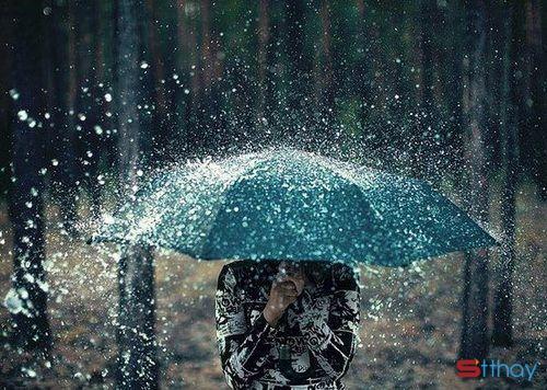 stt mua và những nỗi nhớ khôn nguôi, mưa thổi vào lòng người những dòng cảm xúc