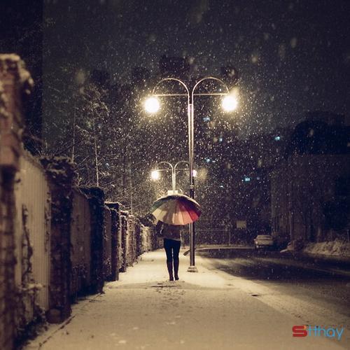 Status hay dành cho người cô đơn giữa mùa đông lạnh giá