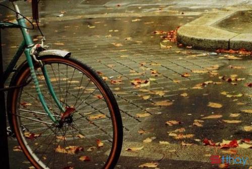 Stt mùa đông cô đơn với những buổi sáng mờ sương lạnh buốt