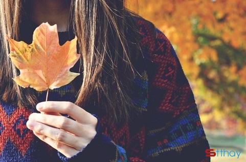 Stt mùa thu se lạnh e bâng khuâng đi qua những con đường lá vàng nhuốm màu ký ức