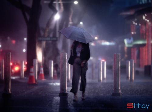 Stt thành phố về đêm nói thay tâm trạng cô đơn, trống vắng của lòng người