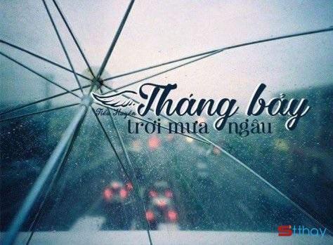 Stt tháng 7, tháng của mưa ngâu hay nước mắt của Ngưu Lang Chức Nữ