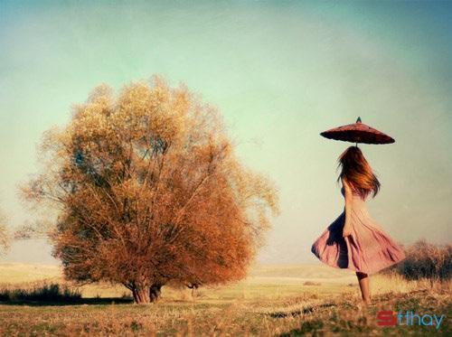 Stt về cô gái tháng 11 bướng bỉnh, kiêu hãnh như cơn mưa đỏng đảnh khúc giao mùa