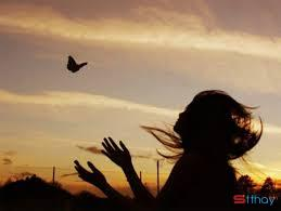 Status buồn viết cho tình yêu đã qua Em ngược về miền nhớ anh